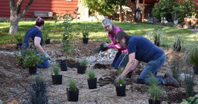 Rain Garden Planting Party