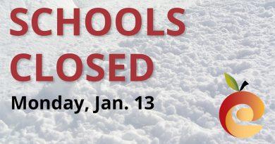Local school delays