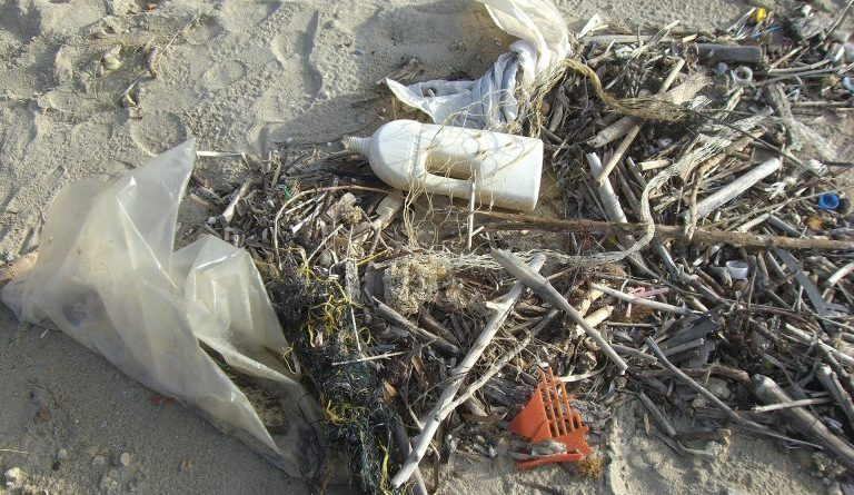 plastic pollution washington