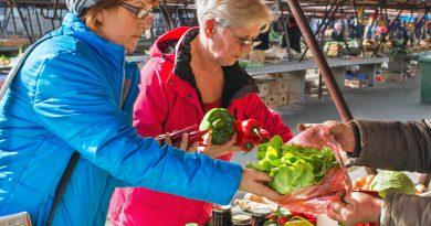 Seniors farmers market