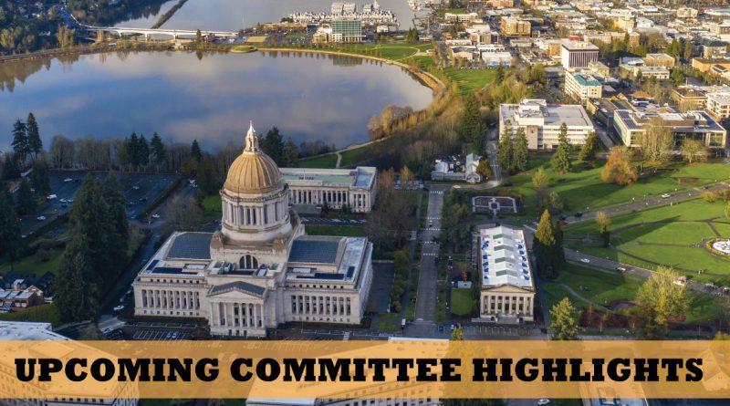 Washington state government