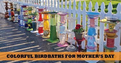 Local homemade birdbaths
