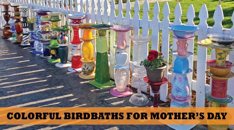 Local homemade birdbaths