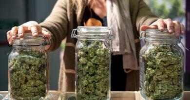 Cannabis Lynnwood