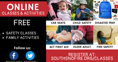 June online Safety classes
