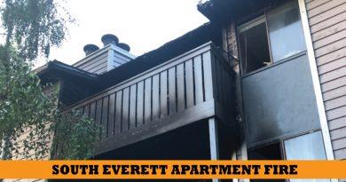south everett fire