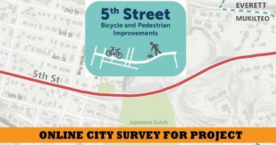 5th street mukilteo survey