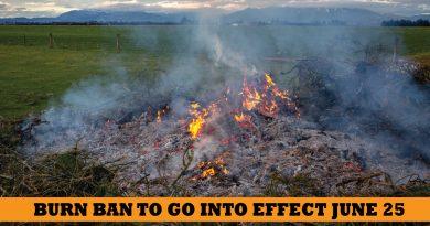 burn ban snohomish county