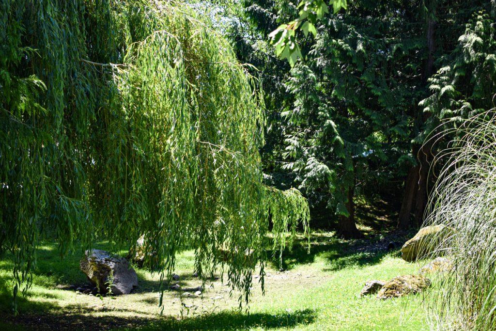 Senior Village Garden