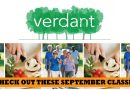 Verdant classes include virtual diabetes prevention, cooking demos in September