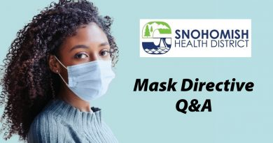 mask directive