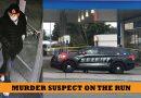 Shooting at Lynnwood Gas station kills employee